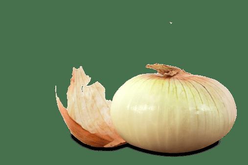 Sweet Onion Meal ideas burger